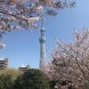 今年の4月から上京した人集合!札幌から転勤になった僕が、東京に来て思ったこと5つ!