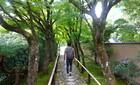 2020/09/29 Tue. 散歩もの@洛北 鷹峯〜紫野〜船岡温泉♨〜賀茂川