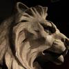 偉人たちの脅威の部屋『大英自然史博物館展』