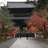 京都紅葉狩り旅行 4