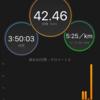 【静岡マラソン2017】サブ4達成し完走!