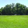 GWは、ひろ~い芝生広場のある淵野辺公園に行こう!