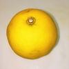 手作りポン酢 ~長崎市伝統の香酸柑橘 『ゆうこう』を使って~