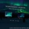PSVR「NORTHERN LIGHTS 極北の夜空に輝く光の物語」感想!ただ静かにオーロラの下で佇む。癒し系VR。