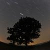 【昔撮った作品を振り返る!】その③:初めての星の軌跡撮影 ~比較明合成のありがたみ~