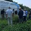 果菜類の出荷と市場や先輩農家さん視察(農大62、65日目)