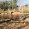 2017-01-03に千葉市の公園2つ(泉谷公園、泉自然公園)へ