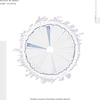 CGView Comparison Toolによるゲノム比較3 - 葉緑体ゲノムの比較
