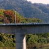 橋から見られる橋