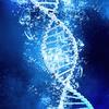水とDNAの相互作用