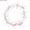 CGView Comparison Toolによるバクテリアのゲノム比較 インストール編