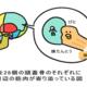 イラスト超考察!永続的な小顔の作り方のロジックを学ぼう!