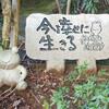 福岡 珍寺 カエル寺の人生カエルの壁写真