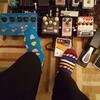 socks du jour #01 洋梨