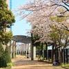 写真いろいろ 258 新子安、横浜~日ノ出町