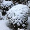積雪、夜には低温注意報…。