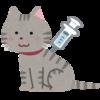 猫の予防接種にかかる費用はどのくらい?種類別の料金を詳しく解説