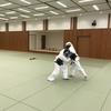 11月4日(土)田町での総合格闘技 日本拳法自由会の練習報告