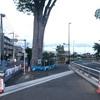 【街歩き】開通前の東八道路を見に行こう(杉並区編)