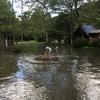 キャンプへGO!白馬グリーンスポーツの森キャンプ場(長野県)