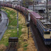 鹿島貨物(EF65-2139牽引)、小淵沢工臨返空(EF64-1052+ロンチキB10車)