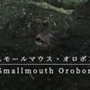 【FF14】 モンスター図鑑 No.085「スモールマウス・オロボン(Smallmauth Orobon)」