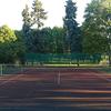 狭いテニス界