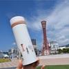 限定マグもタンブラーもボトルも可愛い!神戸メリケンパークのスターバックス