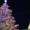 クリスマスツリーと三日月