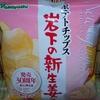【新商品】すごいコラボ!! ポテトチップス 岩下の新生姜味