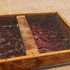 乾かせ〜自家製の乾燥肉スクティを作ってみた〜【自宅】