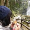 【穴場の絶景スポット】天ケ瀬温泉『桜滝』を眺めながらピクニックランチを堪能!!【名瀑とサンドイッチ】