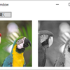 F#でWPF --- BitmapImageで画像ロード