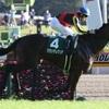 今週の競馬回顧【有馬記念・阪神C】