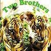 「トゥー・ブラザーズ」を観て、我が「虎映画」の夢を想う