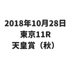 天皇賞(秋)は、ミッキーロケットがG1・2勝目を飾る