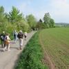 ドイツ、歩く楽しみ ヴィッツェンハウゼン 1