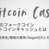 【BCH】ビットコインキャッシュの特徴・将来性|チャートと購入方法