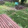 【雑記・DIY】庭いじりを習慣化しよう!草むしりから始める初心者ガーデニング①