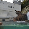 【兵庫県豊岡市】城崎マリンワールドへ行ってきました!釣りもできちゃうとっても楽しい水族館!!