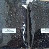 癒しのコーヒー豆 : GOSH ヤンニハラール モカ、タンザニア ピーベリー