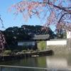 東京大手町『大手門と枝垂れ桜』