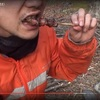 【DVD化希望】今大注目のカメ五郎のサバイバル動画。そのドキュメンタリーぶりに魅せられる