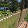 【South Coast】WWOOF20日目。フェンスの掃除が終わりません。