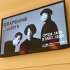 GRAPEVINE tour 2019@Zepp Diver City ツアーファイナルが最高だった件!