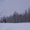 冬休みの自由研究
