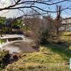 菖蒲沢公園の調整池(仮称)(神奈川県藤沢)