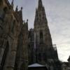 【ウィーン旅行】シュテファン大聖堂内部と監視塔上部からの街の雪景色
