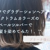 セルフでグラデーションヘア.*。スペクトラムカラーズのペールシルバーで姉の髪を染めてみた!【ブリーチ後にON!】