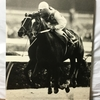 『競馬パネル:テンポイント「1977年:第22回有馬記念」①』